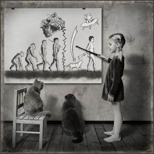 kucing lucu (10)