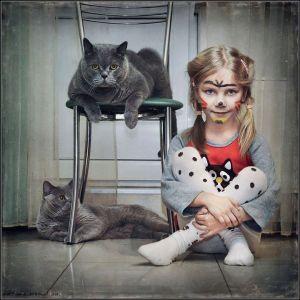 kucing lucu (4)