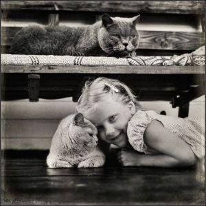 kucing lucu (5)